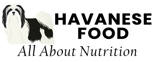 Havanese Food logo